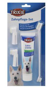 Zahnstein entfernen Hund